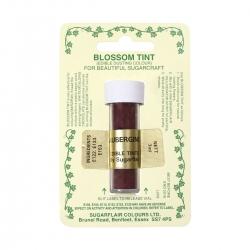 Aubergine Blossom Tint Dust Colour