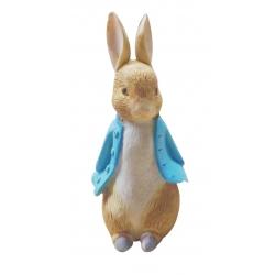 Peter Rabbit Resin Topper
