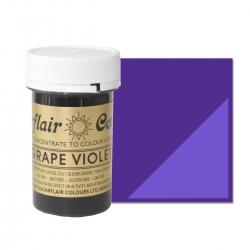 Sugarflair Grape Violet Paste Colour - 25g